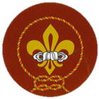 Bhutan Scouts Association.png