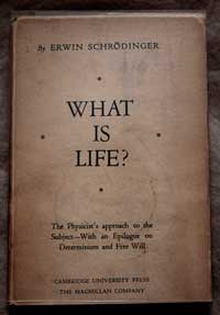 What is life cover.jpg