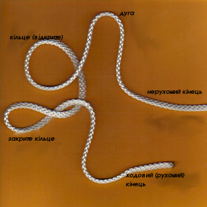 Structure of knot-ua.jpg