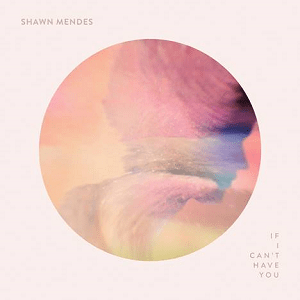 if i can't have you shawn mendes - 1000×1000