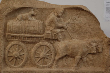 Файл:Roman wine trade oxcart, from grave stele, Augsburg Roman Museum (Photo in public domain) 002.jpg