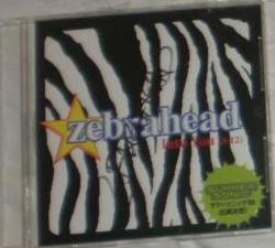 Zebrahead - Into You.jpg