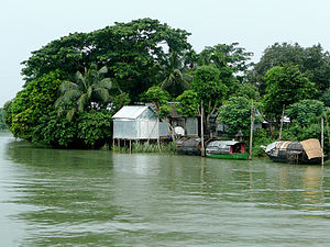 Lush living on Meghna River.jpg