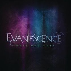 Evanescence - What You Want.jpg