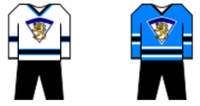 Finland hockey outfit.png