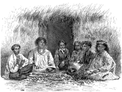Hawaiians Eating Poi 1875.png