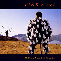 Pink floyd delicate sound of thunder.jpg