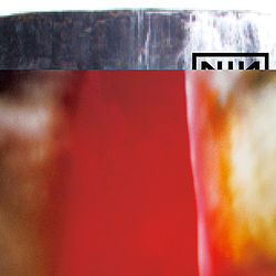 Nin-the fragile800.jpg