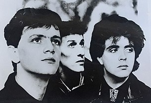 The Icicle Works photo.jpg
