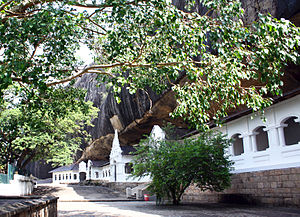 Золотий храм Дамбулла Golden Temple of Dambulla 68.jpg