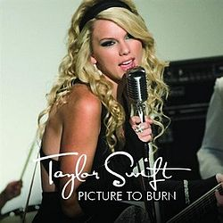 Image result for taylor swift picture to burn