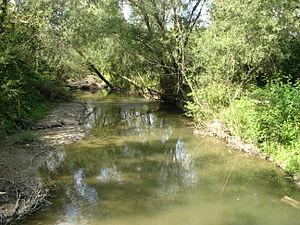 Осіння вересень межень на річці