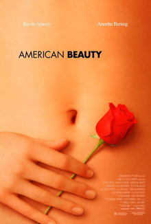 Poster of a woman's abdomen with her hand holding a red rose against it.