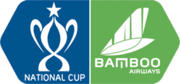 Bamboo Airways National Cup 2019.png