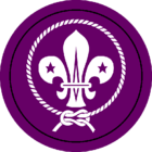 UK Scout Association.png