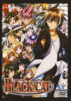 Black Cat DVD 12 cover.jpg