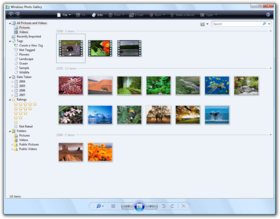 Windows Photo Gallery Vista.png