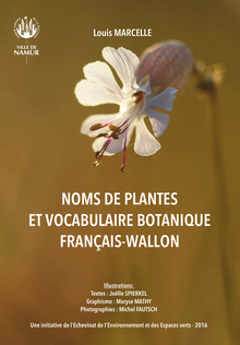 G100 wa (plantes Marcelle).png