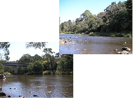 Warrandyte Bridge.JPG
