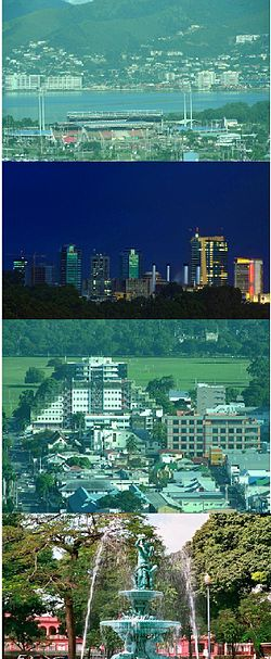 Top: Hasely Crawford Stadium near Invader's Bay. 1st Middle: City Skyline 2008. 2nd Middle: Queen's Park Savannah. Bottom: Woodford Square fountain