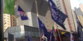 Protest in Hong Kong 2019 New Year's Day Hong Kong Independence's Flag.PNG