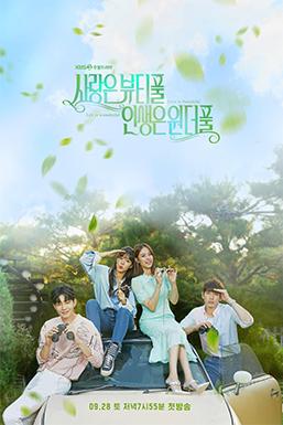 愛情是Beautiful,人生是Wonderful/我的美麗愛情 線上看 韓劇