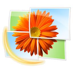 Windows影像中心 维基百科 自由的百科全书