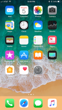 IOS 11.0 beta home screen.png