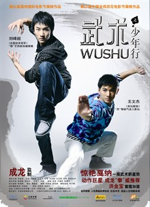 Wushu film poster (China Version).jpg