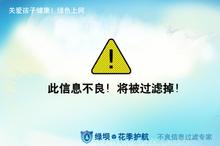 中国网络自由观察:绿坝·花季护航