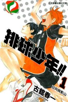 Haikyu cover.jpg