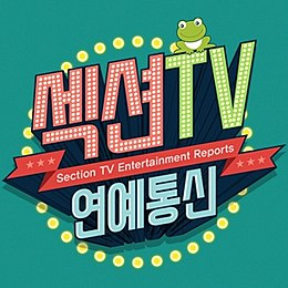 SectionTV Logo.jpg