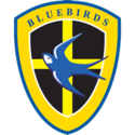 Cardiff City crest.png