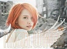 天使之翼 (专辑)