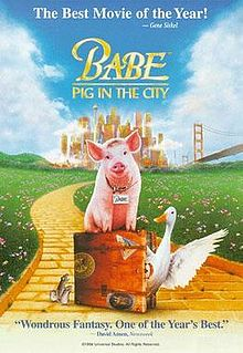Babe pig in the city.jpg