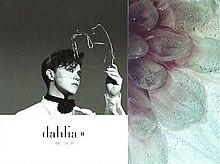Dahlia II