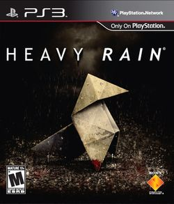 Heavy Rain Cover.jpg