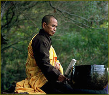 Thich nhat hanh3.jpg