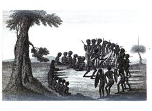 An account of the English colony in New South Wales.djvu-437.png