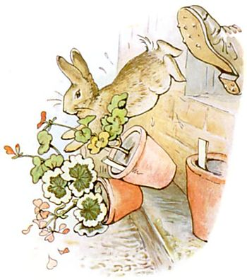 http://upload.wikimedia.org/wikisource/en/thumb/e/eb/PeterRabbit18.jpg/350px-PeterRabbit18.jpg