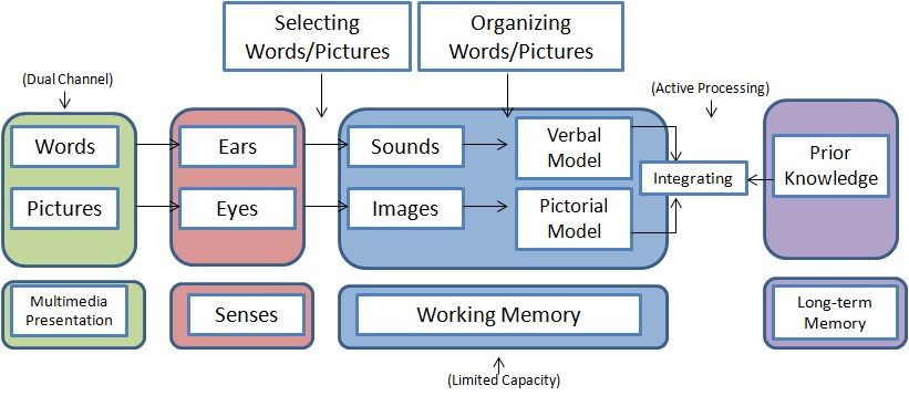 Instructional Design Reducing Cognitive Load In Multimedia Instruction Cognitive Theory Of Multimedia Learning Wikiversity