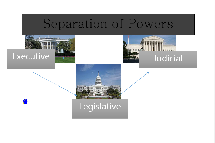 How can you define and contrast separation of powers and checks and balances?