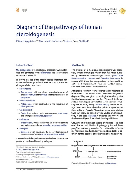 File:Diagram of the pathways of human steroidogenesis.pdf