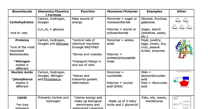 Organic Chemistry Carbon Chemistry And Macromolecules Wikiversity