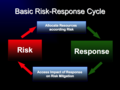 Basic Risk Response Cycle.png