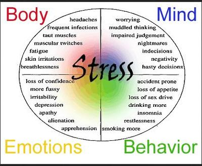 Startling after effects toxic stress