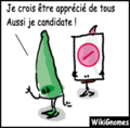 Ironie candidat.png