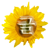 Icon-Sunflower.jpg